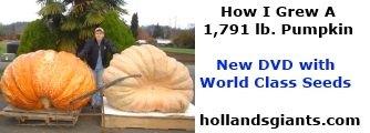 How to Grow Giant Pumpkins 2013 DVD by Hollands Giants
