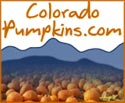 Link To: Colorado Pumpkins